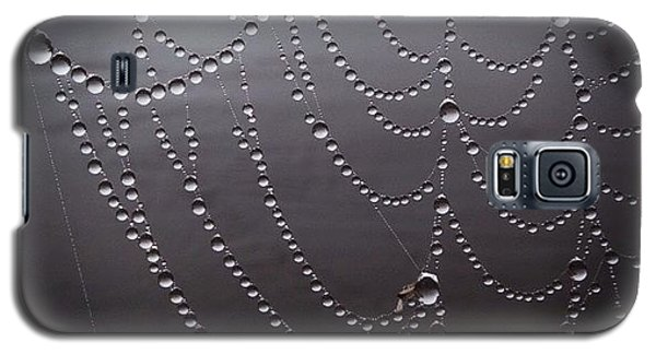 Cool Galaxy S5 Case - Dew On A Spider Web by Heidi Hermes