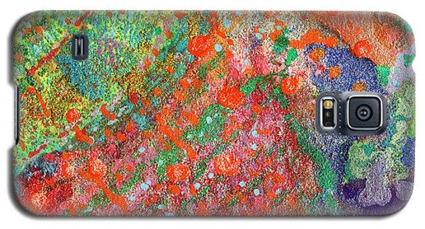 Soul Map II Galaxy S5 Case