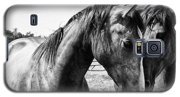 White Horse Galaxy S5 Case - Soul Mates by Toni Hopper