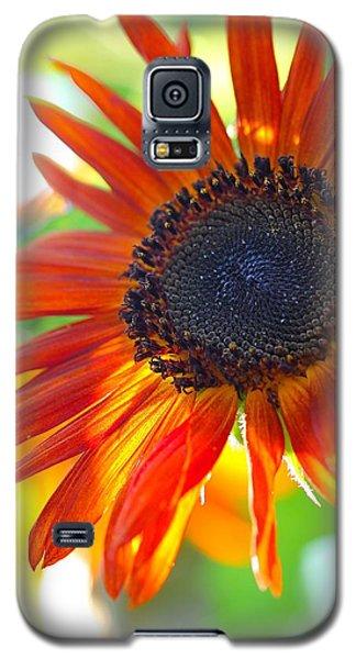 Soul On Fire Galaxy S5 Case