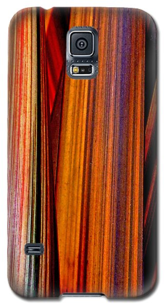 Soulful  Galaxy S5 Case by Steve Taylor