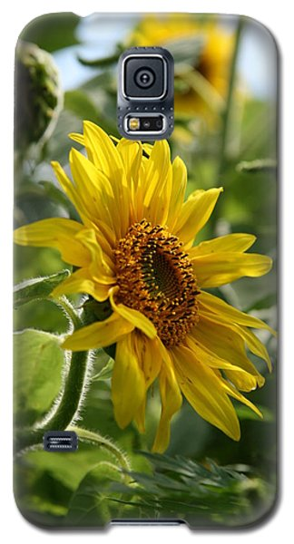 Galaxy S5 Case featuring the photograph Soulshine No.2 by Neal Eslinger