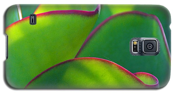Galaxy S5 Case featuring the photograph South African Beauty by Byron Varvarigos