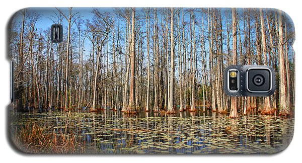 South Carolina Swamps Galaxy S5 Case