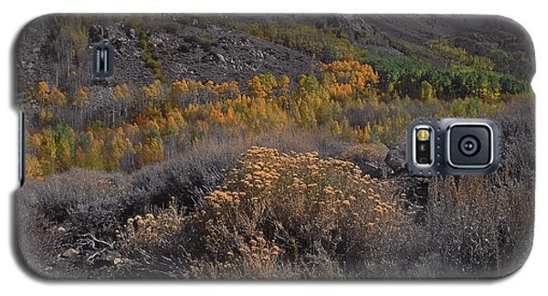 South Fork Valley Gold Galaxy S5 Case