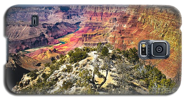 South Rim From The Butte Galaxy S5 Case by Robert Bales