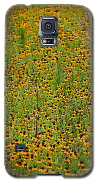 South Texas Mosiac Galaxy S5 Case