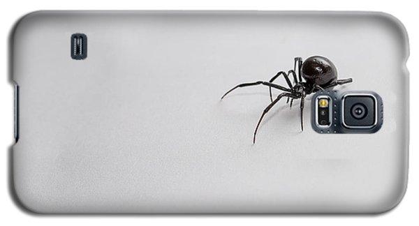 Southern Black Widow Spider Galaxy S5 Case