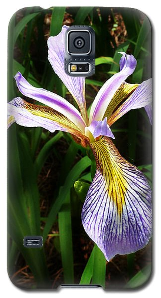 Galaxy S5 Case featuring the photograph Southern Blue Flag Iris by William Tanneberger