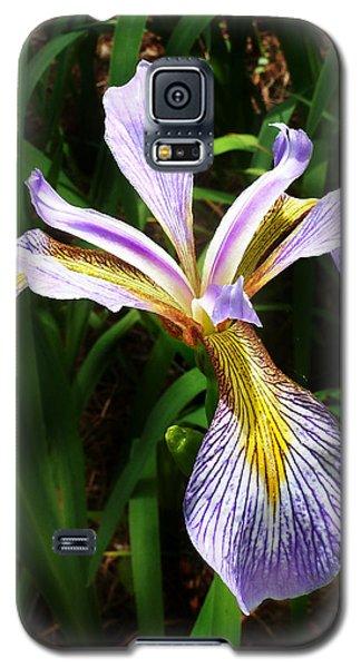 Southern Blue Flag Iris Galaxy S5 Case