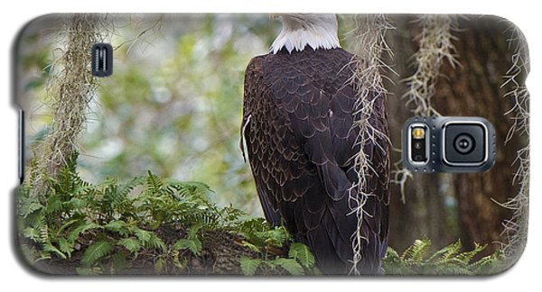Southern Eagle Galaxy S5 Case