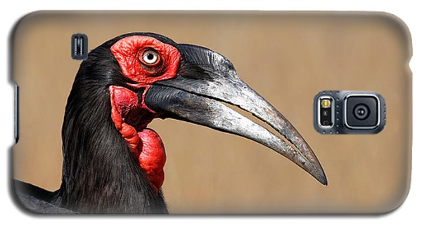Southern Ground Hornbill Portrait Side View Galaxy S5 Case