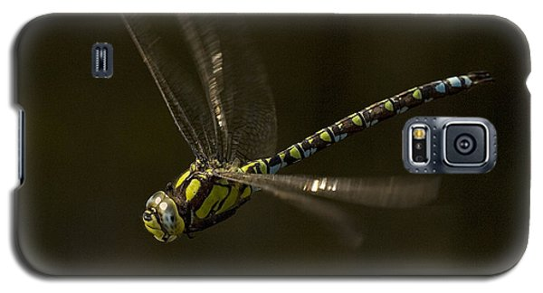 Southern Hawker Dragonfly In Flight Galaxy S5 Case
