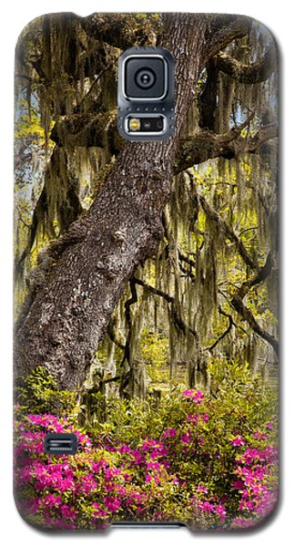 Southern Taste Galaxy S5 Case