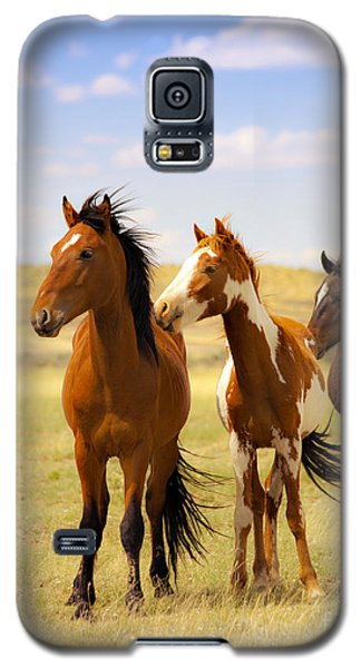 Southwest Wild Horses On Navajo Indian Reservation Galaxy S5 Case