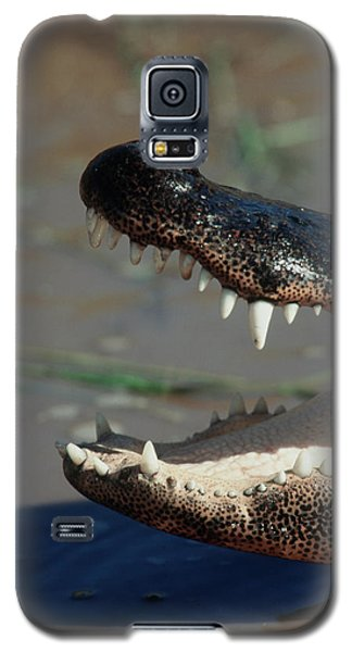Southwestern United States, American Galaxy S5 Case by Stuart Westmorland