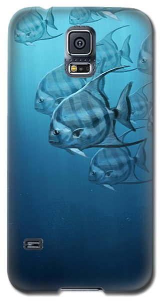 Spade Fish Galaxy S5 Case by Aaron Blaise