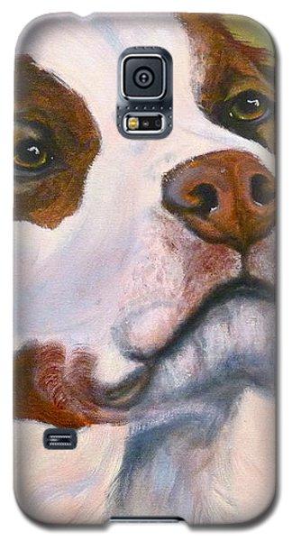 Spaniel Soul Galaxy S5 Case