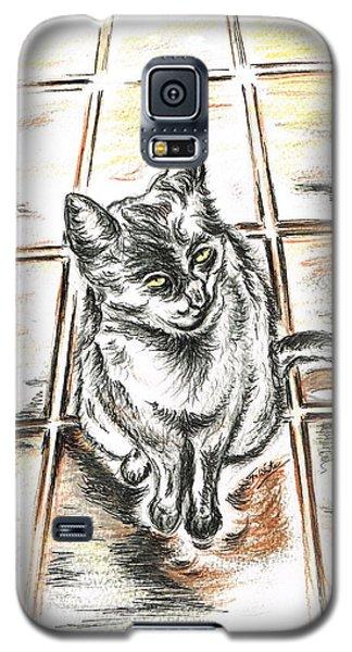 Spanish Cat Waiting Galaxy S5 Case by Teresa White