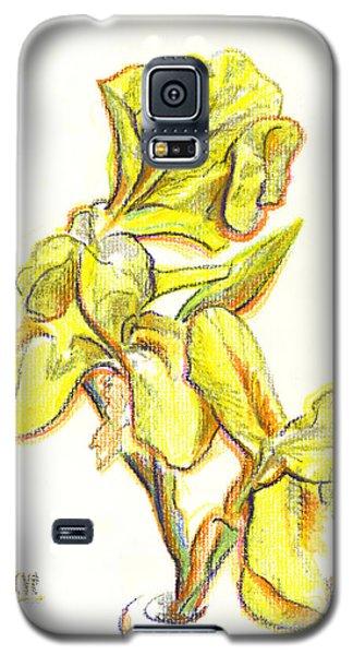 Spanish Irises Galaxy S5 Case