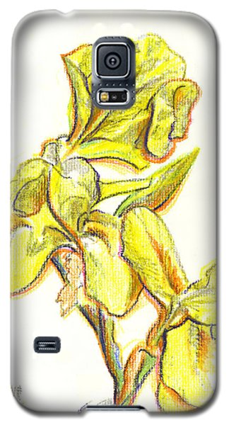 Spanish Irises Galaxy S5 Case