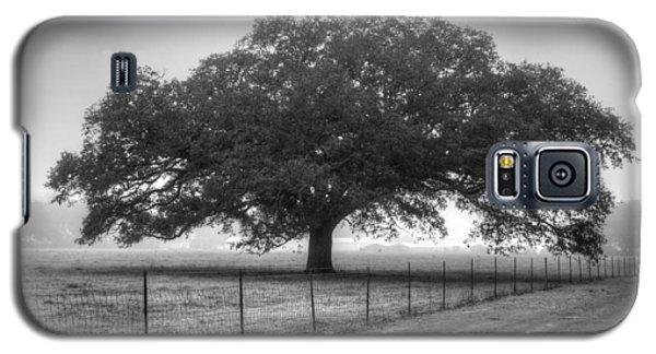 Spanish Oak Black And White Galaxy S5 Case by Lanita Williams