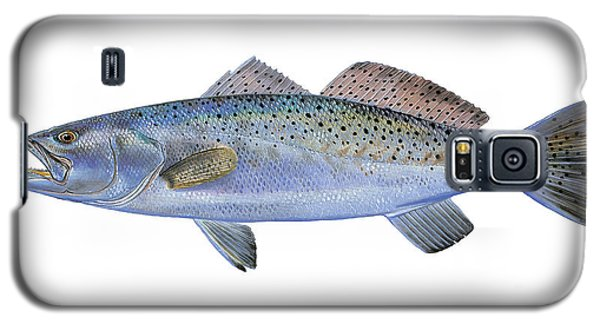 Drum Galaxy S5 Case - Speckled Trout by Carey Chen