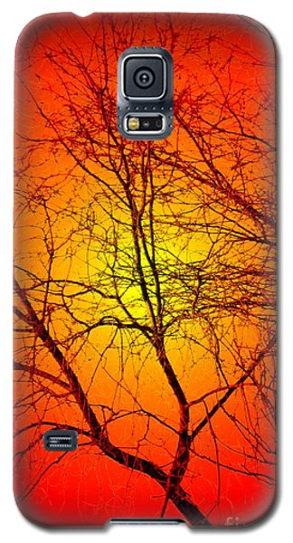 Spectral Sunrise Galaxy S5 Case