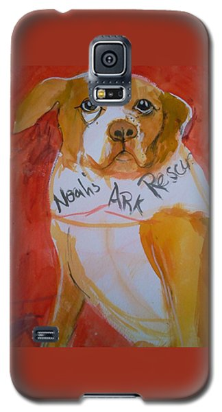 Spencer The Pit Bull Galaxy S5 Case by Gertrude Palmer