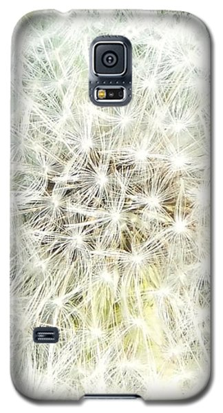 Sphere De Pissenlit Galaxy S5 Case by Marc Philippe Joly