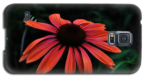 Galaxy S5 Case featuring the photograph Spicy by Judy Wolinsky