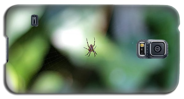 Spider Bokeh Galaxy S5 Case