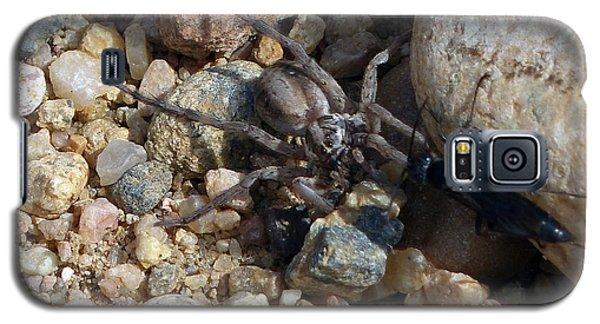 Spider Lost The Battle 2 Galaxy S5 Case