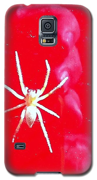 Spider Man Galaxy S5 Case by John Glass