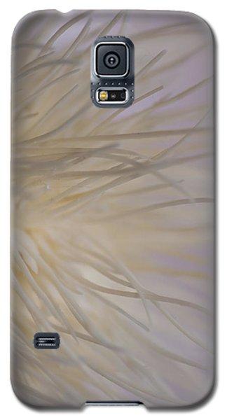 Spider Mum Galaxy S5 Case