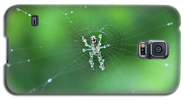 Spider Raindrops Galaxy S5 Case