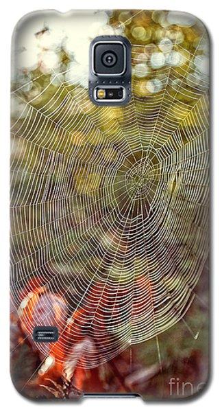 Spider Web Galaxy S5 Case by Edward Fielding