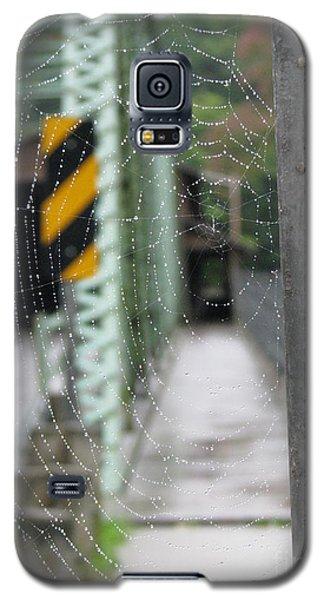 Spider Web Galaxy S5 Case
