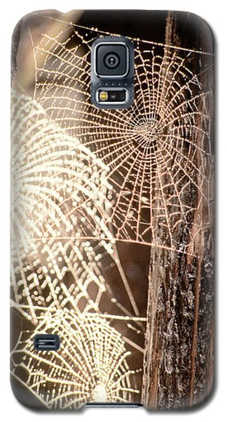 Spider Webs Galaxy S5 Case by Anonymous