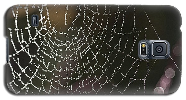 Spiderweb Green Galaxy S5 Case by Artist and Photographer Laura Wrede