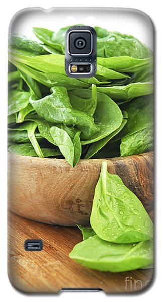 Spinach Galaxy S5 Case by Elena Elisseeva