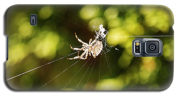 Galaxy S5 Case featuring the photograph Spins A Web by Al Fritz