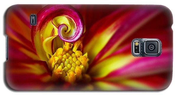 Spiral Galaxy S5 Case by Mary Jo Allen