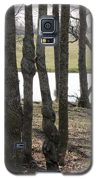 Galaxy S5 Case featuring the photograph Spiral Trees by Nick Kirby
