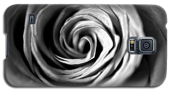 Spiraling Rose Galaxy S5 Case