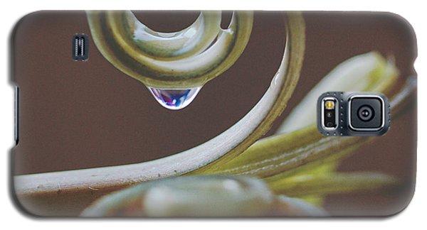 Spirals Galaxy S5 Case by Annette Hugen