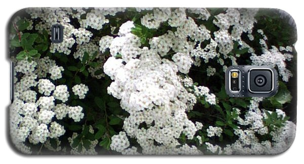 Galaxy S5 Case featuring the photograph Spirea Bridal Veil by Barbara Griffin
