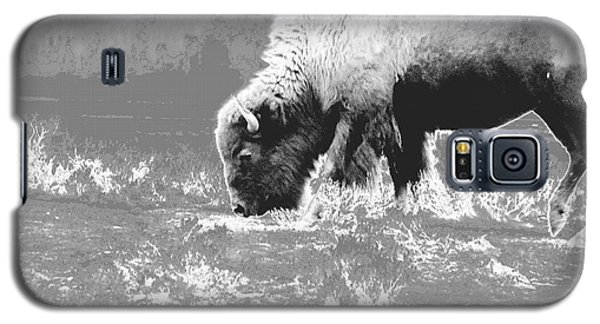 Galaxy S5 Case featuring the photograph Spirit Bison by Ann Johndro-Collins