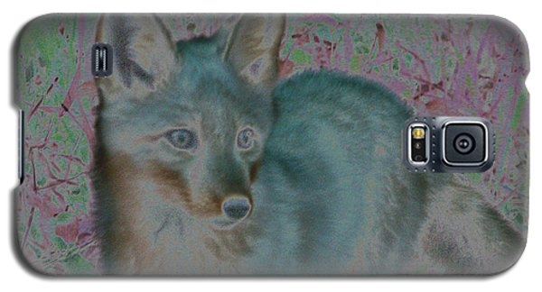 Galaxy S5 Case featuring the photograph Spirit Fox by Aurora Levins Morales