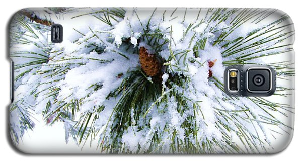 Galaxy S5 Case featuring the photograph Spirit Of Pine by Margie Amberge